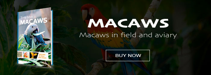 Macaws - Buy the book